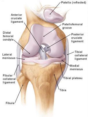 térdízület fájdalma hajlított lábakkal)