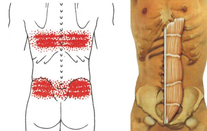 gerinc osteochondrozis és ízületek ízületi kezelése)