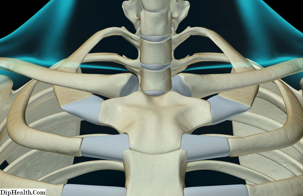 szegycsont clavicularis ízületi gyulladás aloe vera az artrózis kezelésében