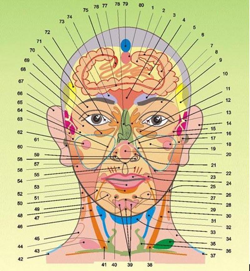 a mellkas gerincének nemcrovertebralis artrózisa)