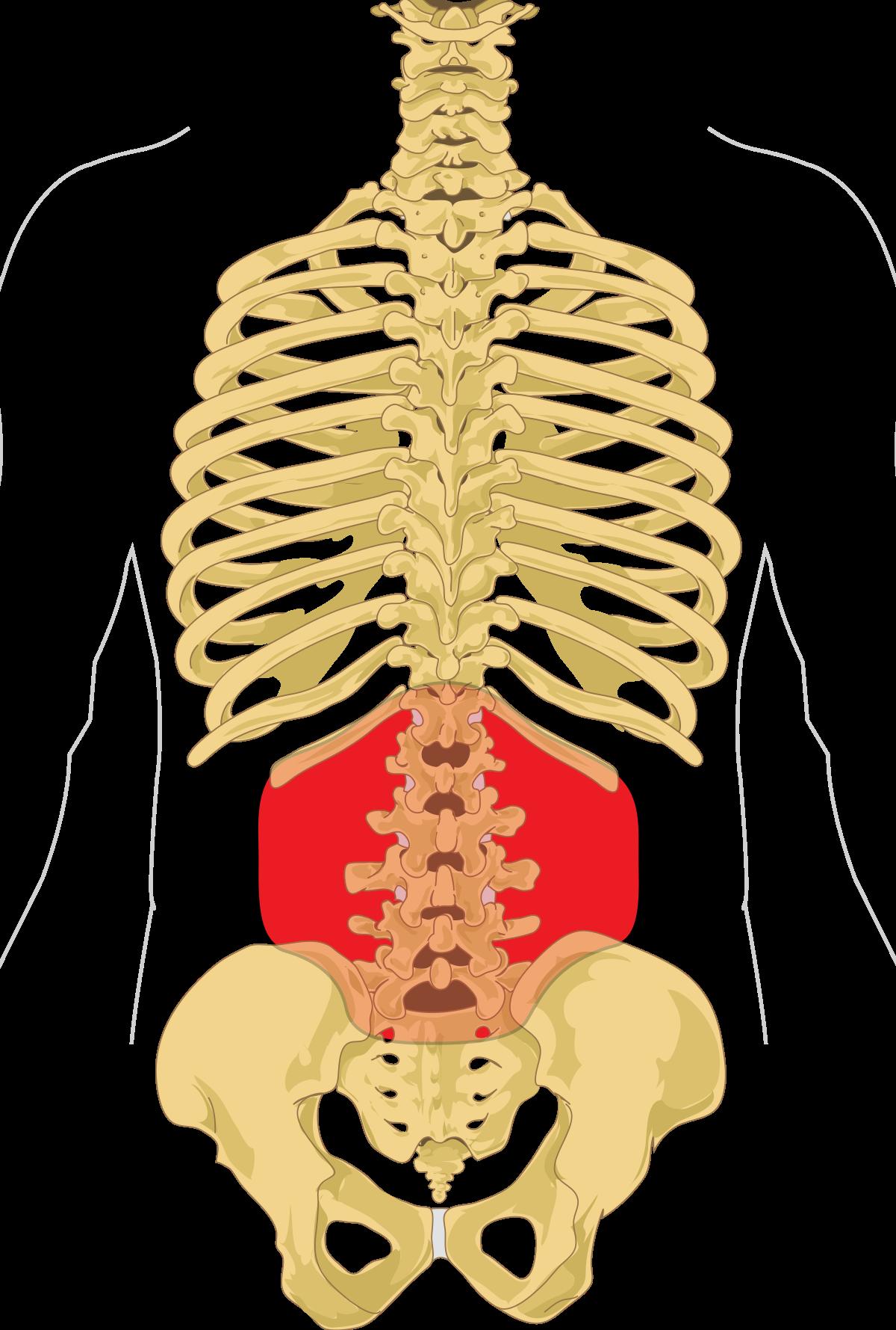 ahol az ízületek és a gerinc kezelhetők