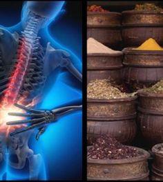 Vagus-meditáció stressz és kiégés ellen | TermészetGyógyász Magazin