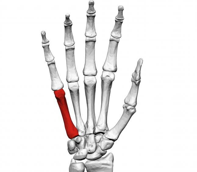 Az osteochondrosis tünetei, amelyeket nem tudtál - Gabonafélék