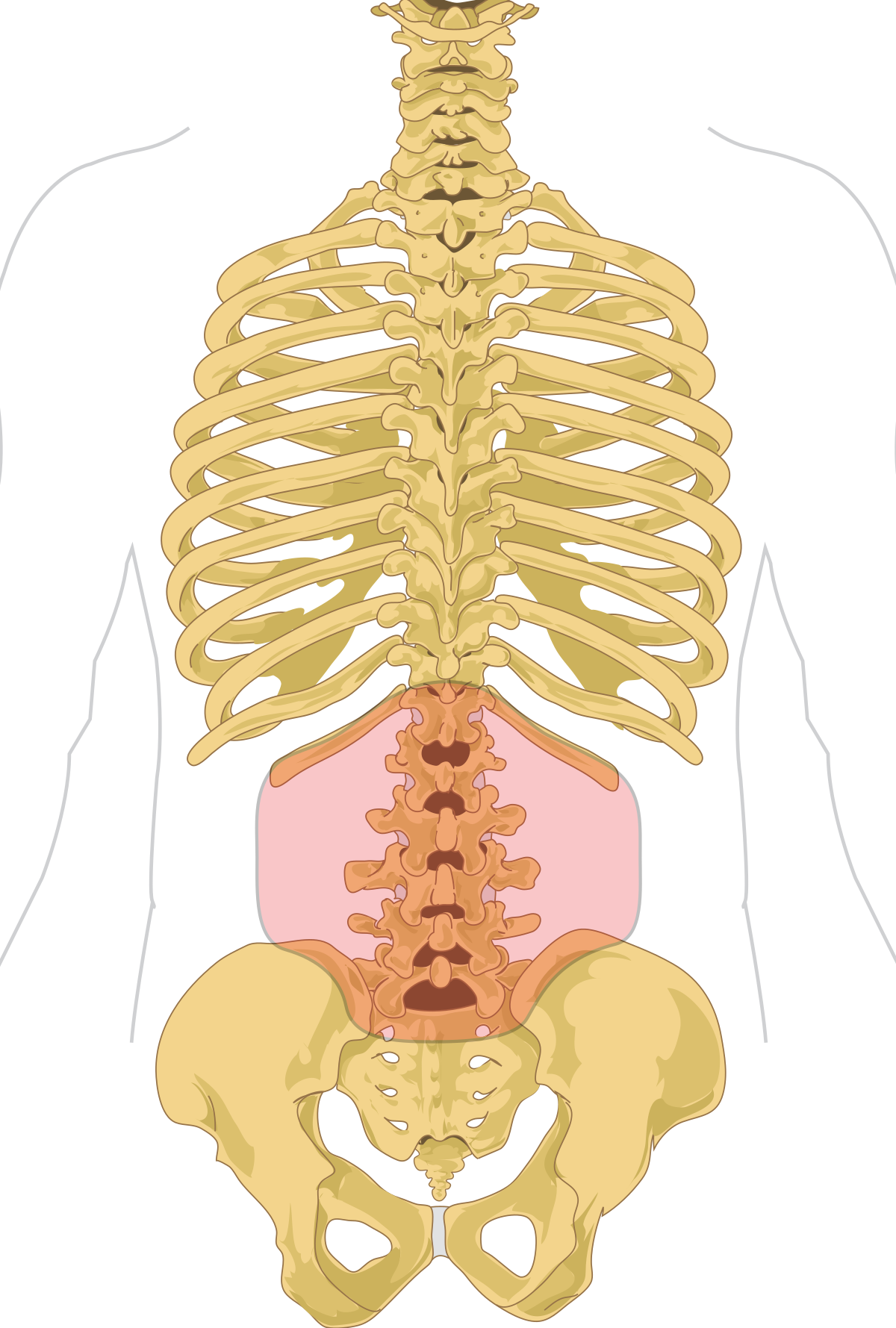 minden ízület és gerinc fáj, hogyan kell kezelni)