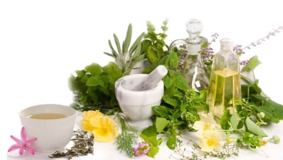 gyulladásgátló gyógynövények ízületi kezelésre)