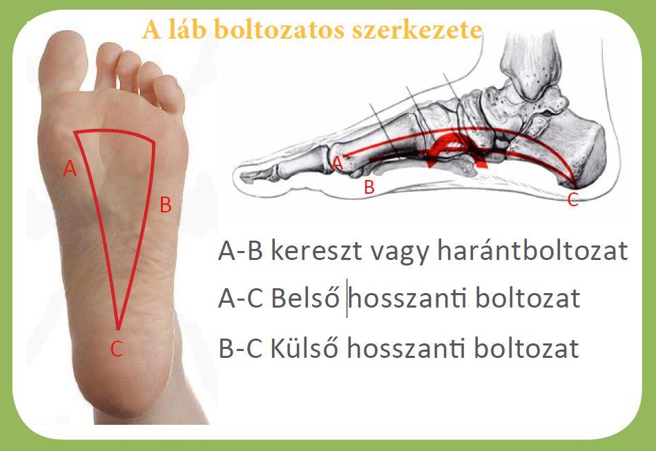 Népi gyógyszerek a nagy lábujj artrózis artritiszére