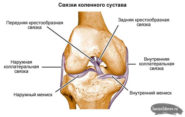 a térdízület külső oldalsó ágának részleges károsodása