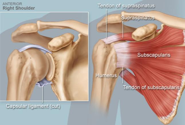 miért fáj a csípő és a vállízület