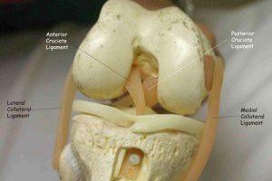 térd sérülések fájdalma