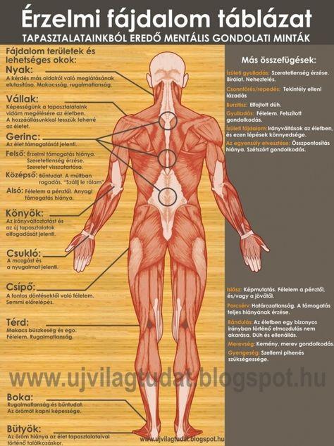 ahol fáj a csípőízület ízületi gyulladása)
