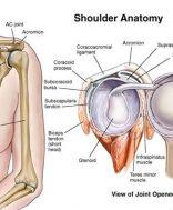 fokhagymaolaj az ízületi mobilitás helyreállításához térdfájdalom kiütés