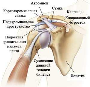 teraflex a vállízület artrózisában ízületi fájdalom a nagy lábujj közelében