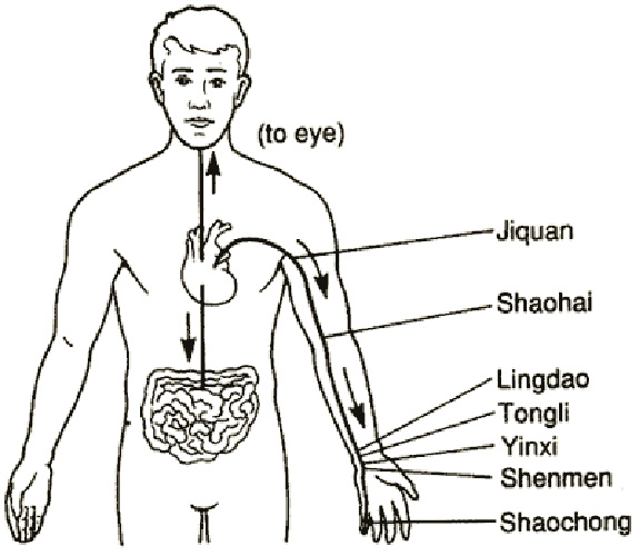 akupunktúra vállfájdalom esetén