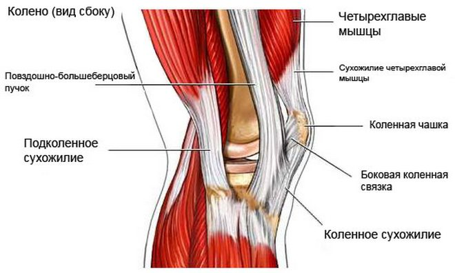 artrózis, amely deformálja a könyökízületet 1 fokos kezelés