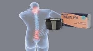 Fájdalom az egész test izomzatában és ízületeiben: okai és kezelése