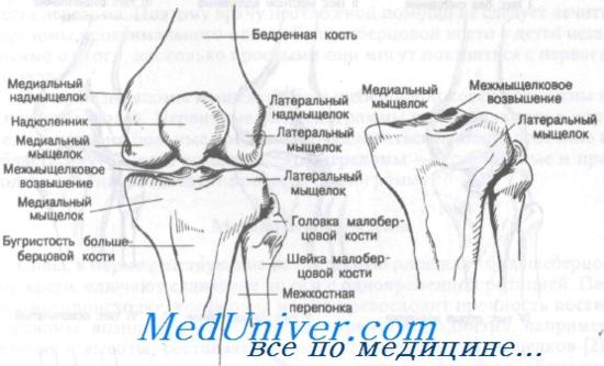 csontvelő ödéma a térdízületben)