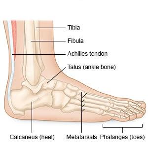 mit kell enni a bokaízület artrózisával