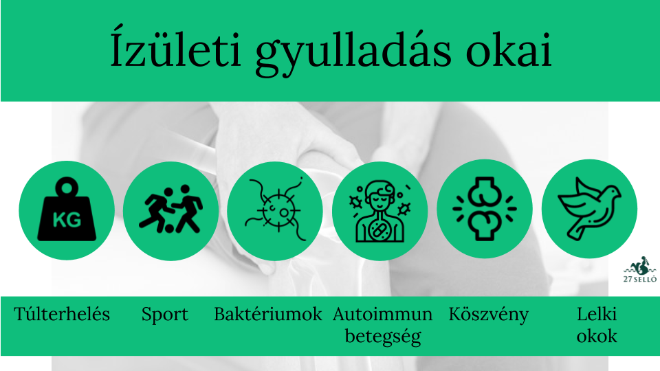 fájdalomcsillapító gyógyszerek a hát és az ízületek fájdalmához)