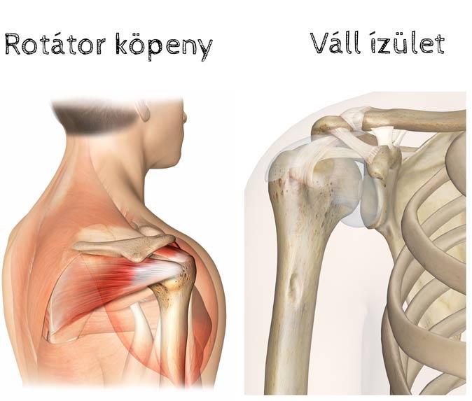 fájdalom a csípőízületekben hosszú séta után ízületi fájdalom az allergiák miatt