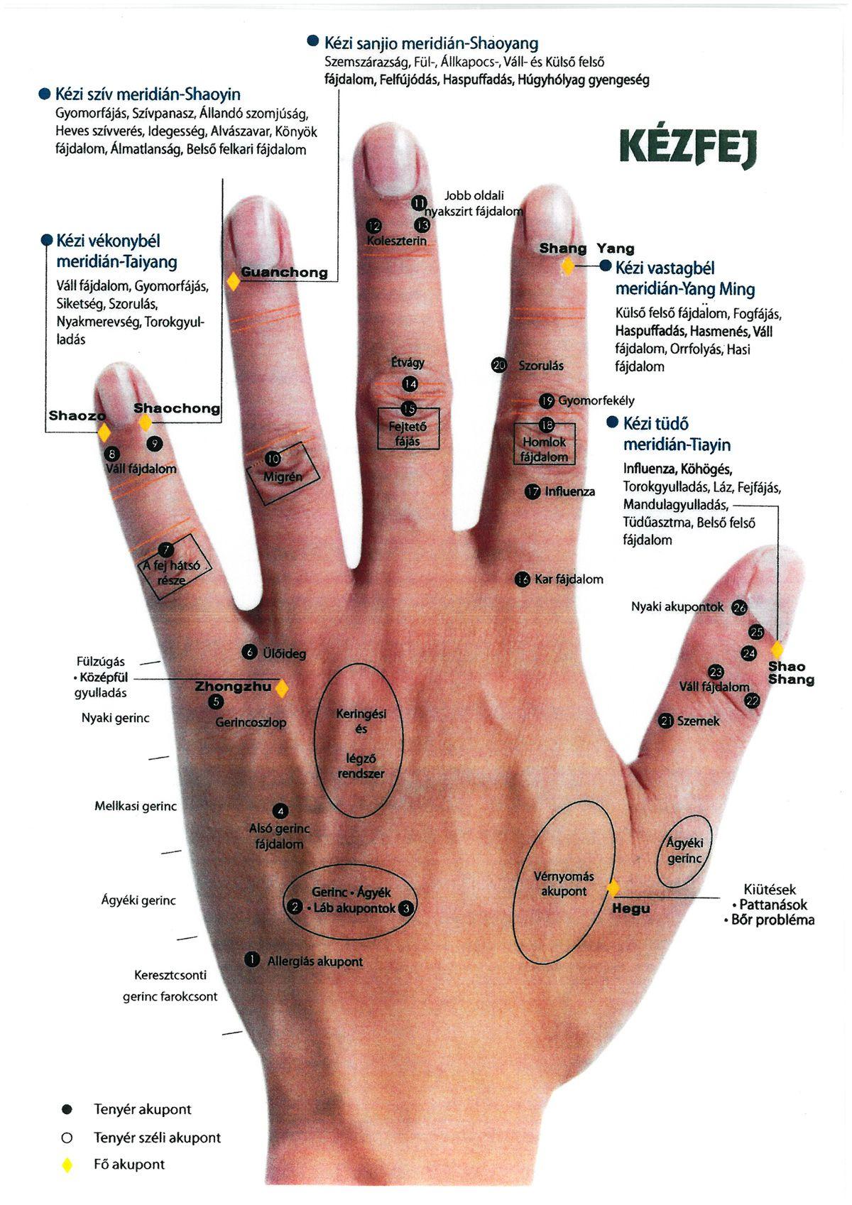 miért fáj a jobb kéz könyökízülete)