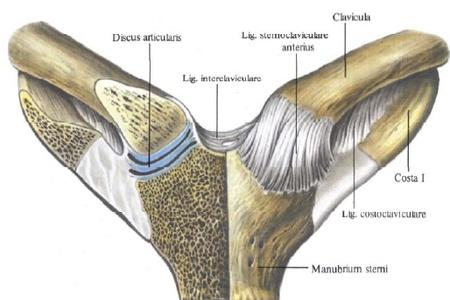 szegycsont clavicularis ízületi gyulladás)