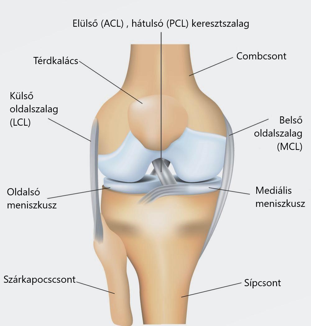 miért fájnak a csípőízületek hosszantartó ülés után