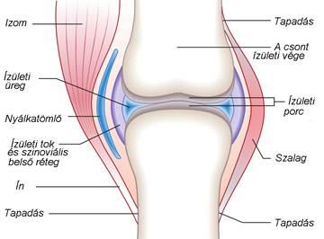 artrózisos kezelés tinktúrákkal