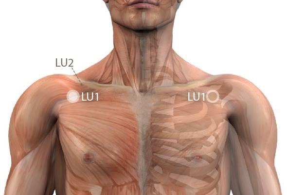 fájdalom a vállízületben és a nyakon a bal oldalon)