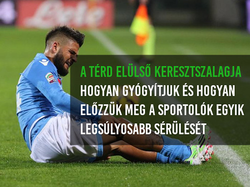 térd sport sérülései)