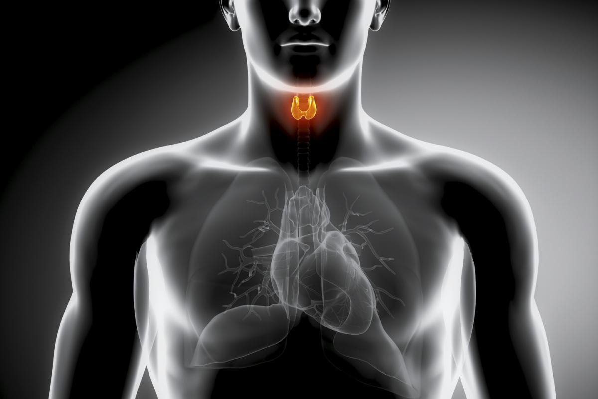 hypothyreosis és ízületi és izomfájdalmak